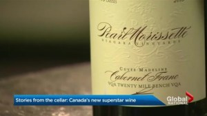 Stories from the Cellar: Small Niagara region vineyard aims to make it big in wine world